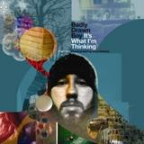 Badly Drawn Boy - It's What I'm Thinking Pt.1