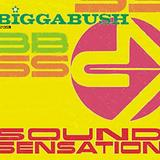 Bigga Bush - Sound Sensation