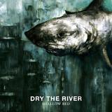 Dry The River -  Artwork