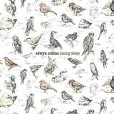 Edwyn Collins - Losing Sleep