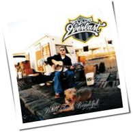 Everlast - White Trash Beautiful