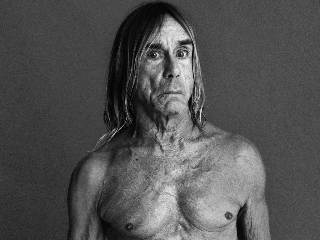 iggy pop i wanna be your dog