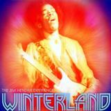 Jimi Hendrix - Winterland Artwork