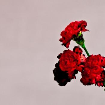 John Legend -  Artwork