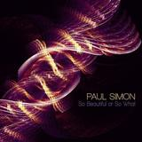 Paul Simon - So Beautiful Or So What Artwork