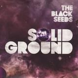 The Black Seeds - Solid Ground