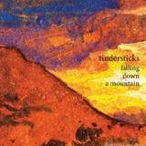 Tindersticks - Falling Down A Mountain Artwork