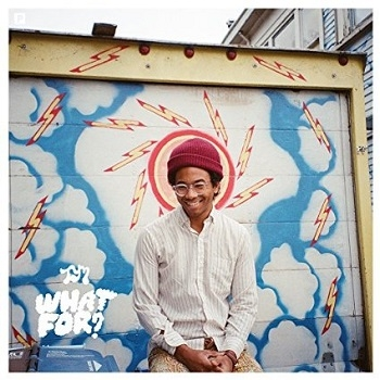 Toro Y Moi - What For? Artwork