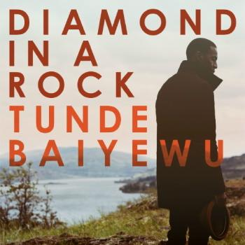 Tunde Baiyewu - Diamond In A Rock Artwork