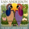 Ian Anderson - The Secret Language Of Birds: Album-Cover