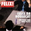Felix Da Housecat - 'Kittenz And Thee Glitz' (Cover)