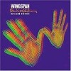Paul McCartney - 'Wingspan' (Cover)
