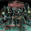 Vomitory - 'Blood Rapture' (Cover)
