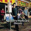 The Wallflowers - 'Breach' (Cover)