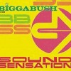 Bigga Bush - Sound Sensation: Album-Cover