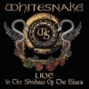 Whitesnake - 'Live In The Shadow Of The Blues' (Cover)