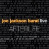 Joe Jackson - 'Afterlife (Live)' (Cover)