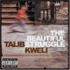 Talib Kweli - 'The Beautiful Struggle' (Cover)