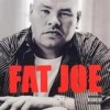 Fat Joe - All Or Nothing: Album-Cover