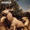 Interpol - 'Our Love To Admire' (Cover)