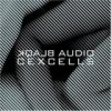 Blaqk Audio - CexCells: Album-Cover