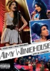 Amy Winehouse - I Told You I Was Trouble: Album-Cover
