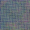 Animal Collective - Merriweather Post Pavilion: Album-Cover