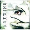 Entwine - Painstained: Album-Cover