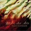 Black Sun Aeon - Darkness Walks Beside Me: Album-Cover