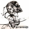 Sybreed - The Pulse Of Awakening: Album-Cover