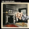 The Charlatans - Who We Touch: Album-Cover
