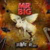 Mr. Big - What If ...: Album-Cover