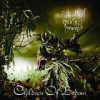 Children Of Bodom - Relentless Reckless Forever: Album-Cover