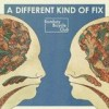 Bombay Bicycle Club - A Different Kind Of Fix: Album-Cover