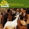 The Beach Boys - 'Pet Sounds' (Cover)