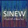 Sinew - Pilots Of A New Sky: Album-Cover