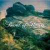 Band Of Horses - Mirage Rock: Album-Cover