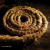 Nine Inch Nails - Recoiled: Album-Cover