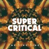 The Ting Tings - Super Critical: Album-Cover