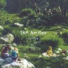 Sam Amidon - Lily-O: Album-Cover
