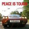 Terranova - 'Peace Is Tough' (Cover)