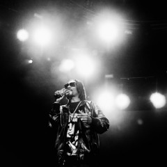 Snoop Lion, Summerjam 2013.
