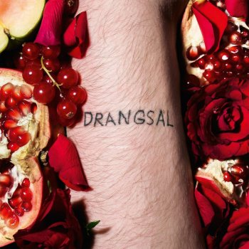 Drangsal - Harieschaim Artwork