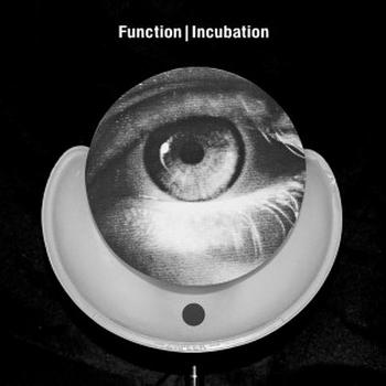 Function - Incubation Artwork