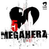 Megaherz - 5 Artwork
