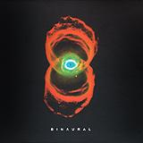 Pearl Jam - Binaural Artwork