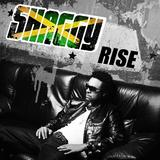 Shaggy - Rise Artwork
