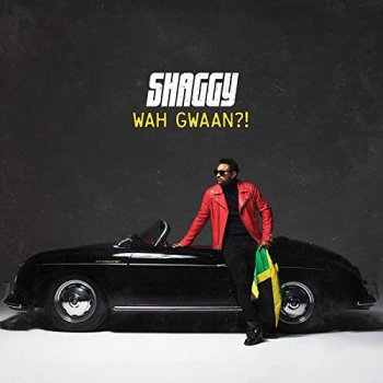 Shaggy - Wah Gwaan?! Artwork