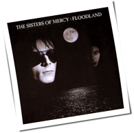 The Sisters Of Mercy - Floodland (Vinyl Boxset)