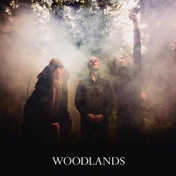 Woodlands - Woodlands Artwork